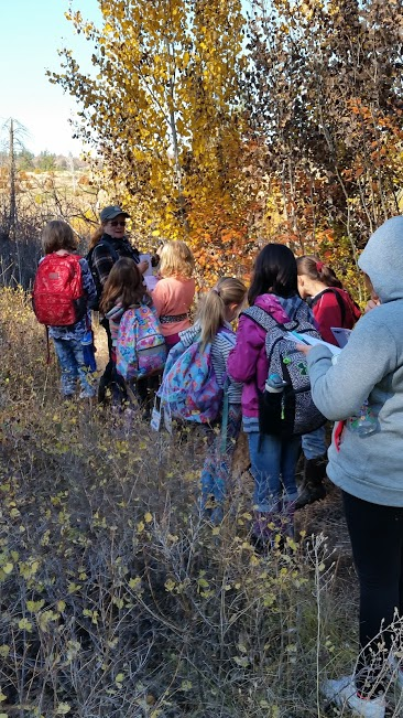 Laurie Wilhite, Klickitat TU Youth Engagement Chair, leads a stream walk (Credit: Molly Fahlenkamp)